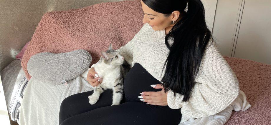 Toxoplasmosis, embarazadas y gatos